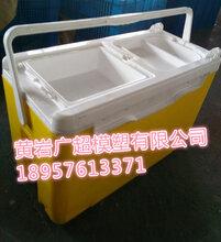 供应多功能钓鱼箱塑料模具