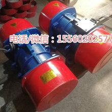 yzu-40-6淘沙专用振动电机3kw震动电机大型矿筛振动电机图片