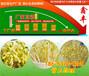 咸陽多功能大型豆芽機廠家質量保證