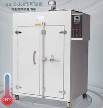 智能干燥箱-旭朗香腸干燥箱-PID儀表干燥箱圖片