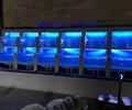 张家港免费设计酒店张家港海水鱼缸定做厂家直销