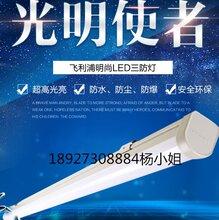 飞利浦17W/28W1.2米WT088C明尚LED三防灯