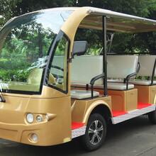 供应重庆KRD-D9电动旅游观光车