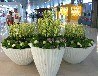 定制異形玻璃鋼花盆選哪個廠家-深圳雨桐制作玻璃鋼花盆可以