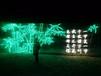 国际灯光秀了浪漫温馨效果展览