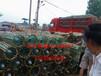 常州市絕緣子串回收絕緣子串回收價格鼎盛電瓷廠
