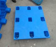 安阳塑料托盘仓库用塑料拍子九角平板1008图片