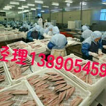 出国劳务20多个国家劳务输出图片