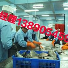 出国劳务欧洲大量招工年薪30万以上劳务输出包食宿图片
