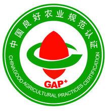 GAP認證