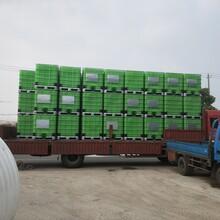ibc吨桶价格、化工桶供应厂家、1000L塑料方形包装桶图片