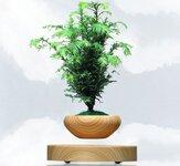磁悬浮木底座圆体盆栽,震撼发售
