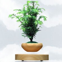 磁悬浮盆栽用什么磁铁