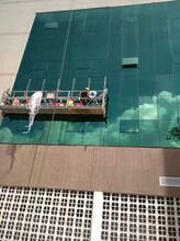广州幕墙玻璃拆卸安装工程服务站