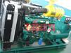 南充100千瓦柴油油发电机组养殖业工程专用100kw全铜发电机组厂家直销