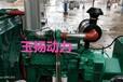 厂家租赁泰安150千瓦发电机工程备用电源潍柴原厂150kw发电机