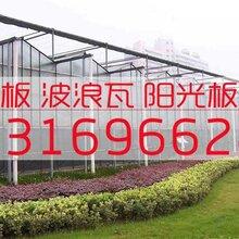 阳光板厂家供应蔬菜大棚温室PC阳光板