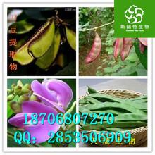 刀豆粉生产厂家_刀豆粉价格