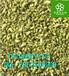 槐米提取物作用纯天然优质槐米粉