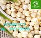 莲子提取物作用/纯天然优质莲子粉