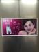 上海众城传媒资深的电梯门广告,自有媒体