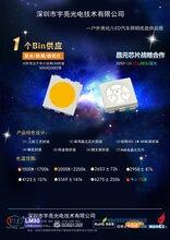 热销贴片5050RGB三防系列LED灯珠