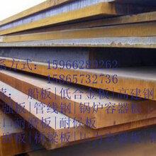 伊春冶钢产Q295GNHL耐候中厚钢板最新行情