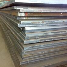 晉中市65高錳鋼板貨源充足圖片