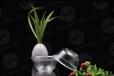 寿百康一次性水晶餐具加盟一扫光,成功创业首选项目
