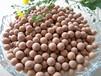 淄博腾翔麦饭石球TX-MFS成都大量批发水杯厂用3毫米抑菌矿化球