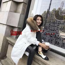 厂家直供韩版时尚羽绒服雪罗拉西树影黛一手货源走份批发