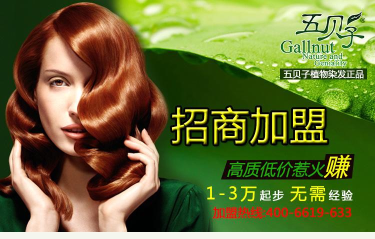 上海五贝子正宗染发剂五贝子畅销十周年0加盟费招商了无氨配方