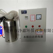 厂家直销水箱自洁消毒器WTS-2B
