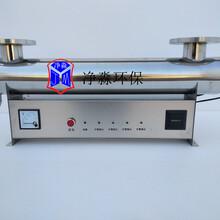 定州净淼JM-UVC-600紫外线杀菌消毒器全国包邮