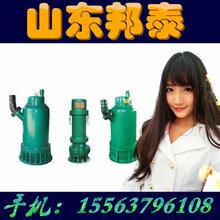 WQB潜水泵型号安泰泵业WQB800-50-185隔爆型排污泵污水泵图片