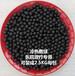 淄博腾翔远红外生物热敷陶瓷珠TX-YHWRFQ微波炉加热远红外球嘉兴生物理疗热敷球
