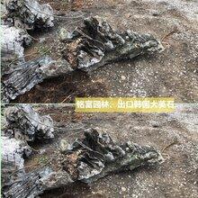 广东纹路好的大英石多少钱一吨?大型英石假山石批发基地图片