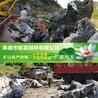 大英石裝車發往浙江的大英石多少錢?大型假山石批發基地