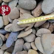 深圳鹅卵石生产基地-河滩石园林造景石-建筑路面铺设用鹅卵石