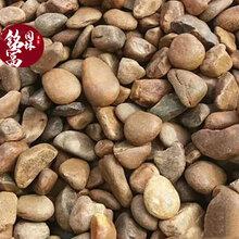 天然杂色鹅卵石批发-现货鹅卵石图片-天然园林装饰杂色鹅卵石