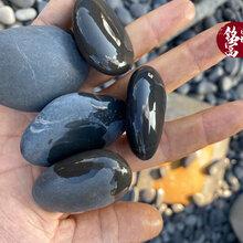 黑色光滑鹅卵石批发-黑色鹅卵石鱼缸造景石工程铺路园林造景石