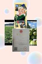 我是辽宁省新民市西瓜代办-辽宁西瓜代收团队图片
