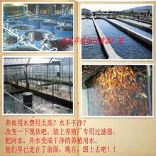 厂家专业生产水产养殖净水过滤器养鱼虾水处理设备物优价廉