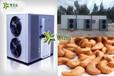 空氣能腰果烘干設備腰果烘干機價格腰果烘干機省電