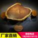 客厅放实木茶桌,滨海县简约现代茶桌实木大板茶桌自然边大板五次烘干胡桃木茶桌