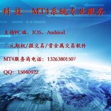 湖北MT4交易平台出售MT4交易软件出售MT4交易系统出售