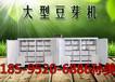 貴州畢節豆芽機多功能豆芽機豆芽機直銷廠家微電腦控制