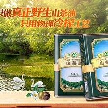 绿达山茶油2.5L金罐装