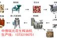 ZY中豫瑞光棕榈果榨油机设计新颖河北廊坊rg
