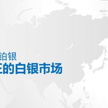 上海华通铂银交易市场有限公司图片